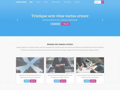 froze Free web template
