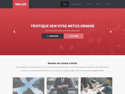 hallux2 free web template - Free Website Templates