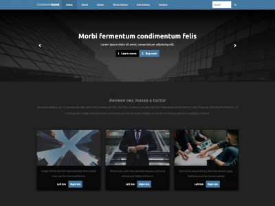 bridges Free web template